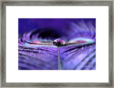 A New Vision Framed Print by Krissy Katsimbras