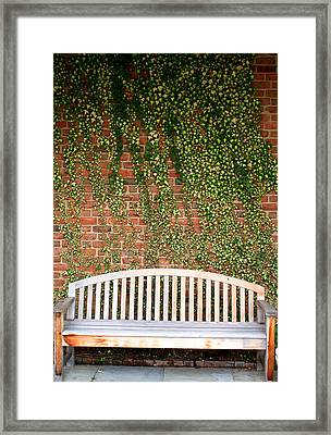 Framed Print featuring the photograph A Nice Sit by Jean Haynes