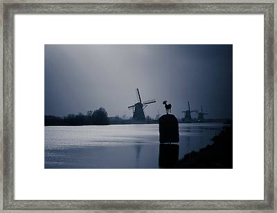 A Nice View Framed Print