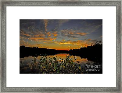 A Night Of Color Framed Print by Paul Gitto