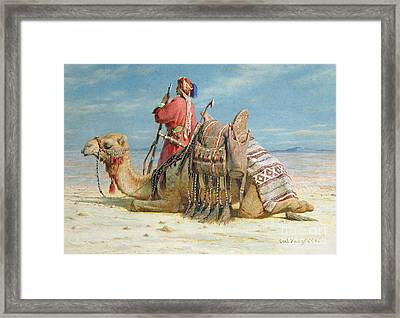 A Nomad And His Camel Resting In The Desert Framed Print