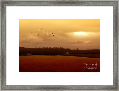 A November Day In The Country Framed Print