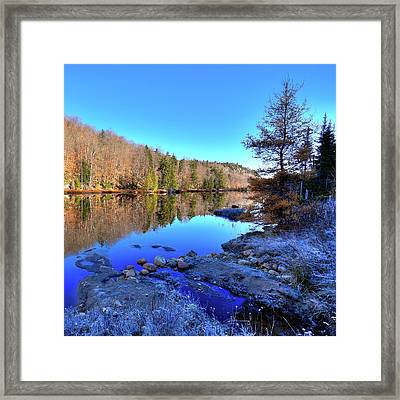 Framed Print featuring the photograph A November Morning On The Pond by David Patterson