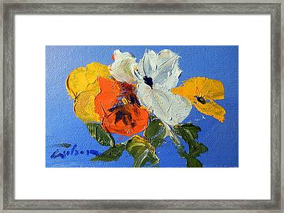 A Nudge Of Pansies Framed Print by Ron Wilson