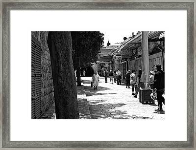 A Nun's Walk Framed Print by John Rizzuto