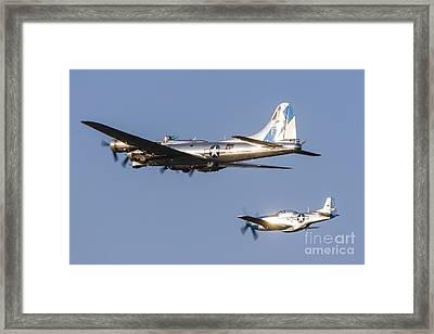 A P-51 Mustang Flies Alongside A B-17 Framed Print by Rob Edgcumbe