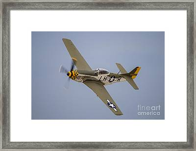 A P-51 Mustang Flies By At Waukegan Framed Print by Rob Edgcumbe