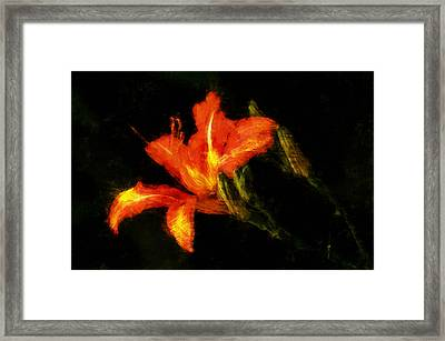 Framed Print featuring the digital art A Painted Lily by Cameron Wood