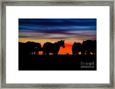 A Painted Sky Framed Print by Jim McCain