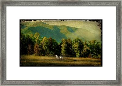A Pair Framed Print by Mike Eingle