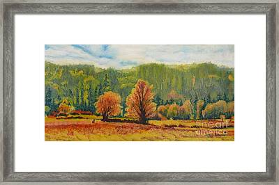 A Pair Of Golden Trees  Framed Print
