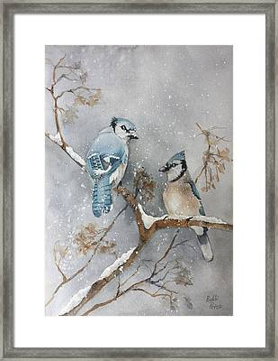 A Pair Of Jays Framed Print by Bobbi Price