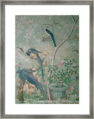 A Pair Of Magpie Jays  Vintage Wallpaper Framed Print