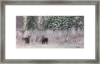 A Pair Of Moose Framed Print by Lorie Smith