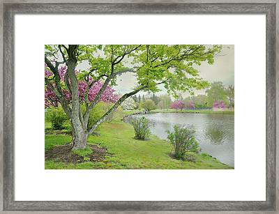A Park Place Framed Print by Diana Angstadt