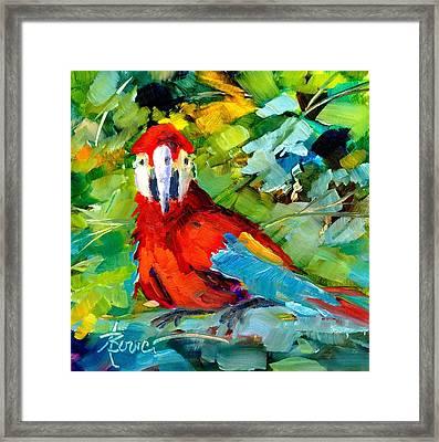 Papagalos Framed Print