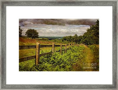 A Path From  A Hill Framed Print by Linsey Williams