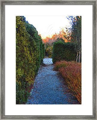 A Path In Fall Mood Framed Print