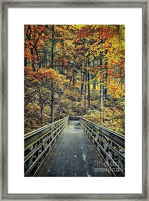 A Path Into Autumn Framed Print by Evelina Kremsdorf