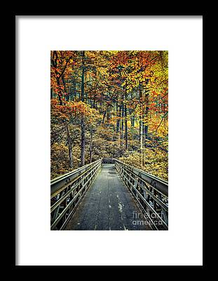 Poconos Framed Prints