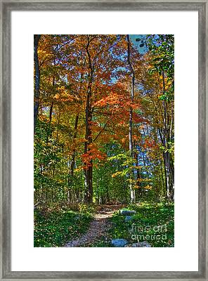 A Path Of Color Framed Print by Robert Pearson