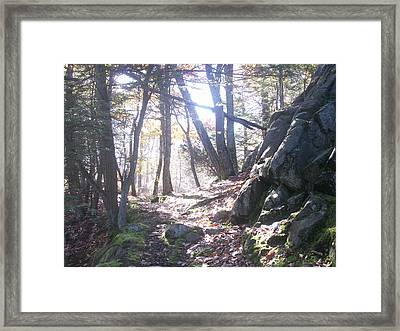 A Path Once Travelled Framed Print
