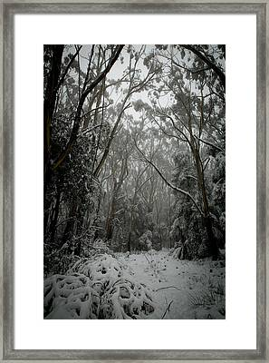 A Path Somewhere Framed Print by Michael James
