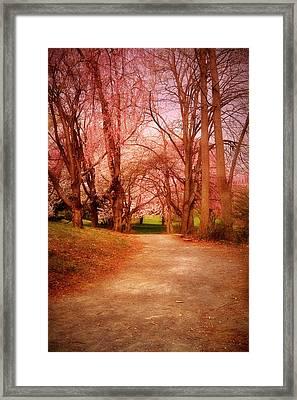 A Path To Fantasy - Holmdel Park Framed Print by Angie Tirado
