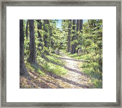 A Path Well-travelled Framed Print by Joseph Carragher