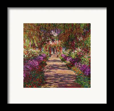Pathways Framed Prints