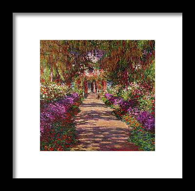 Garden Flowers Framed Prints