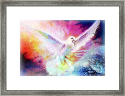 A Peace Dove Framed Print