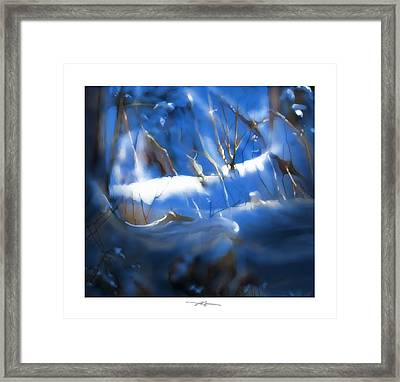 A Peace Of Winter Framed Print
