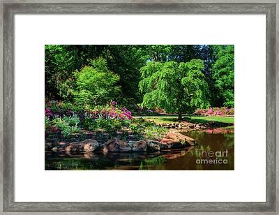 A Peaceful Feeling At The Azalea Pond Framed Print by Tamyra Ayles