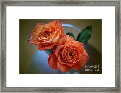 Framed Print featuring the photograph A Peach Delight by Diana Mary Sharpton