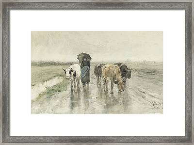 A Peasant Woman With Cows On A Country Lane In The Rain Framed Print