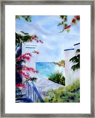 A Peek At Paradise Framed Print