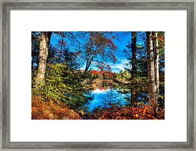 A Peek At The Moose River In Fall Framed Print by David Patterson