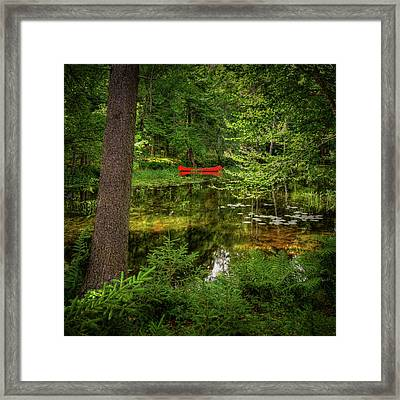 A Peek At The Red Canoe Framed Print by David Patterson