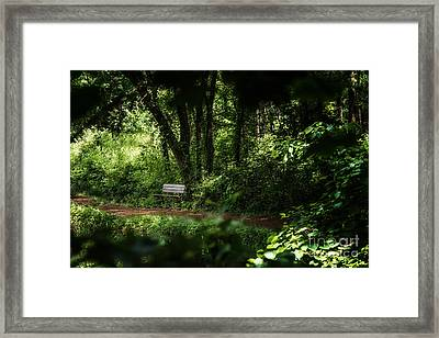 A Peek At The Resting Bench Framed Print by Tamyra Ayles