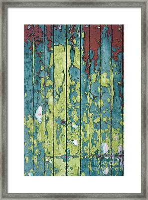 A Peeling Framed Print by Tim Gainey