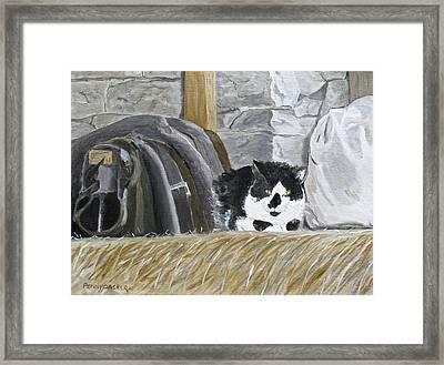 A Penns Valley Barn Kitty Framed Print