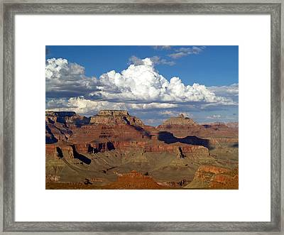 A Perfect Day Framed Print by Carrie Putz