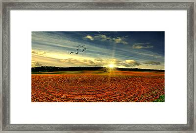 A Perfect Day Framed Print by Tom York Images