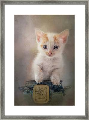 A Perfect Fit Framed Print