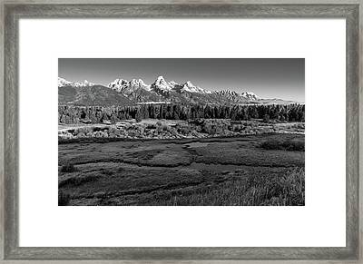 A Perfect Frosty Morning In Grey Scale Framed Print