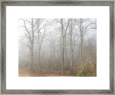 Framed Print featuring the photograph A Perfectly Beautiful Foggy Morning by Diannah Lynch