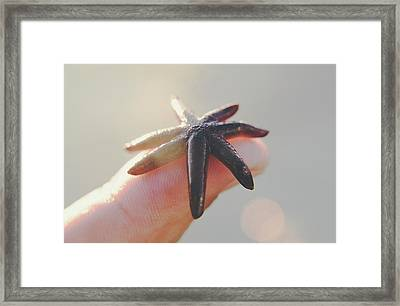 A Person Holds A Tiny Starfish Sea Star On Its Fingertip Of The Index Finger. Framed Print