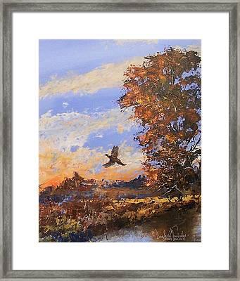 A Pheasent At Sundown Framed Print by Douglas Trowbridge