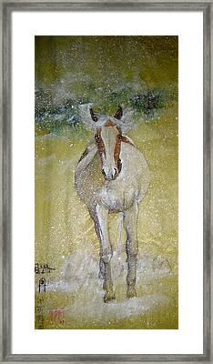 Framed Print featuring the painting A Picture Of Freedom by Debbi Saccomanno Chan